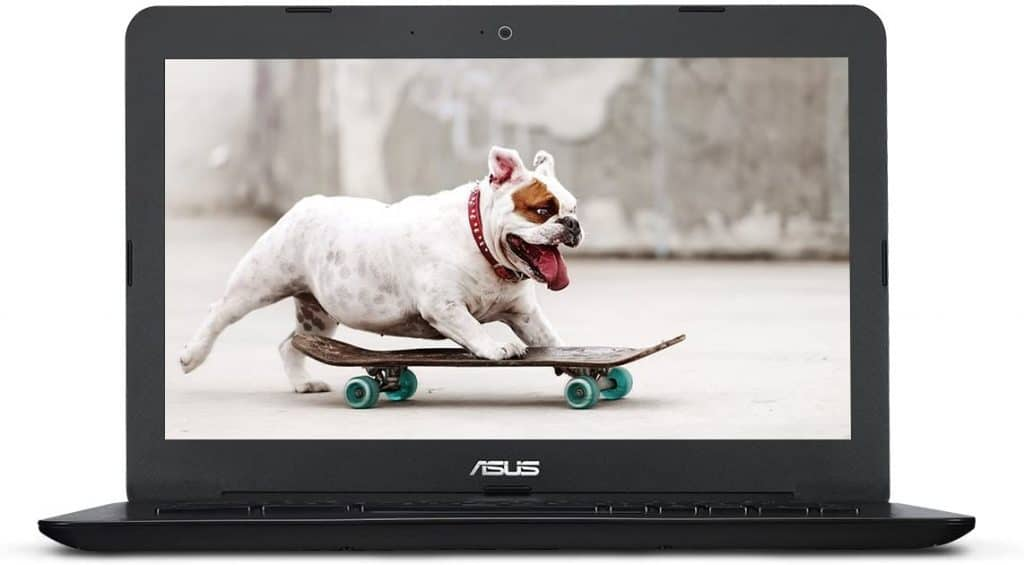 cheap laptop with cute dog on screen
